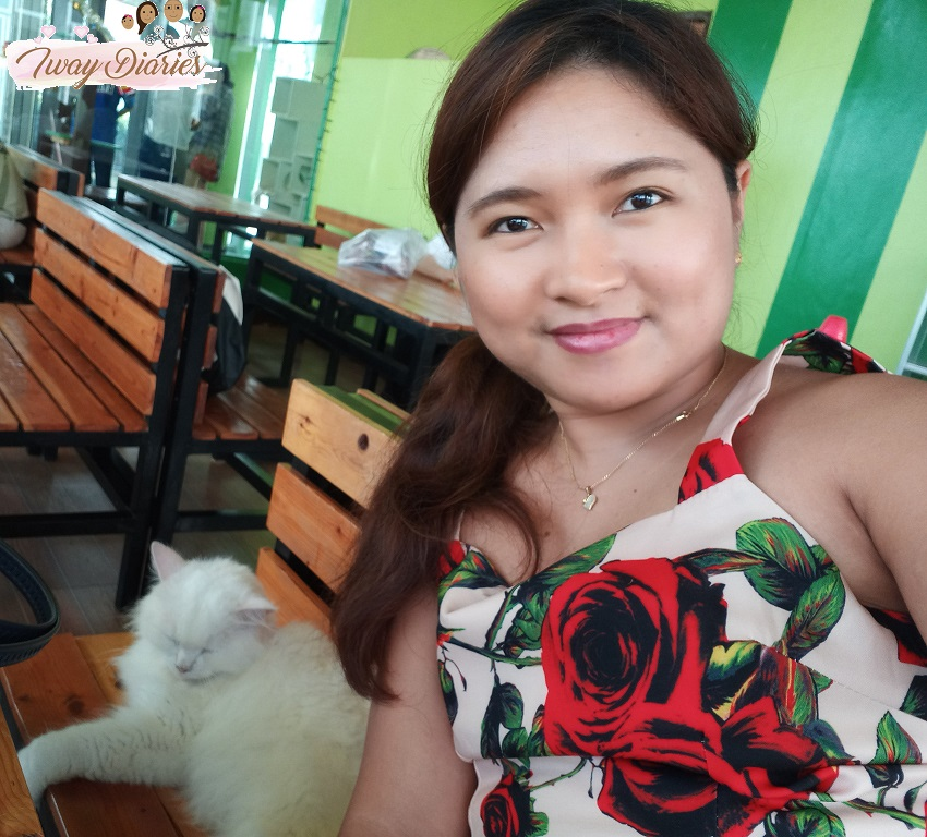 Cat Cafe Cebu (1)