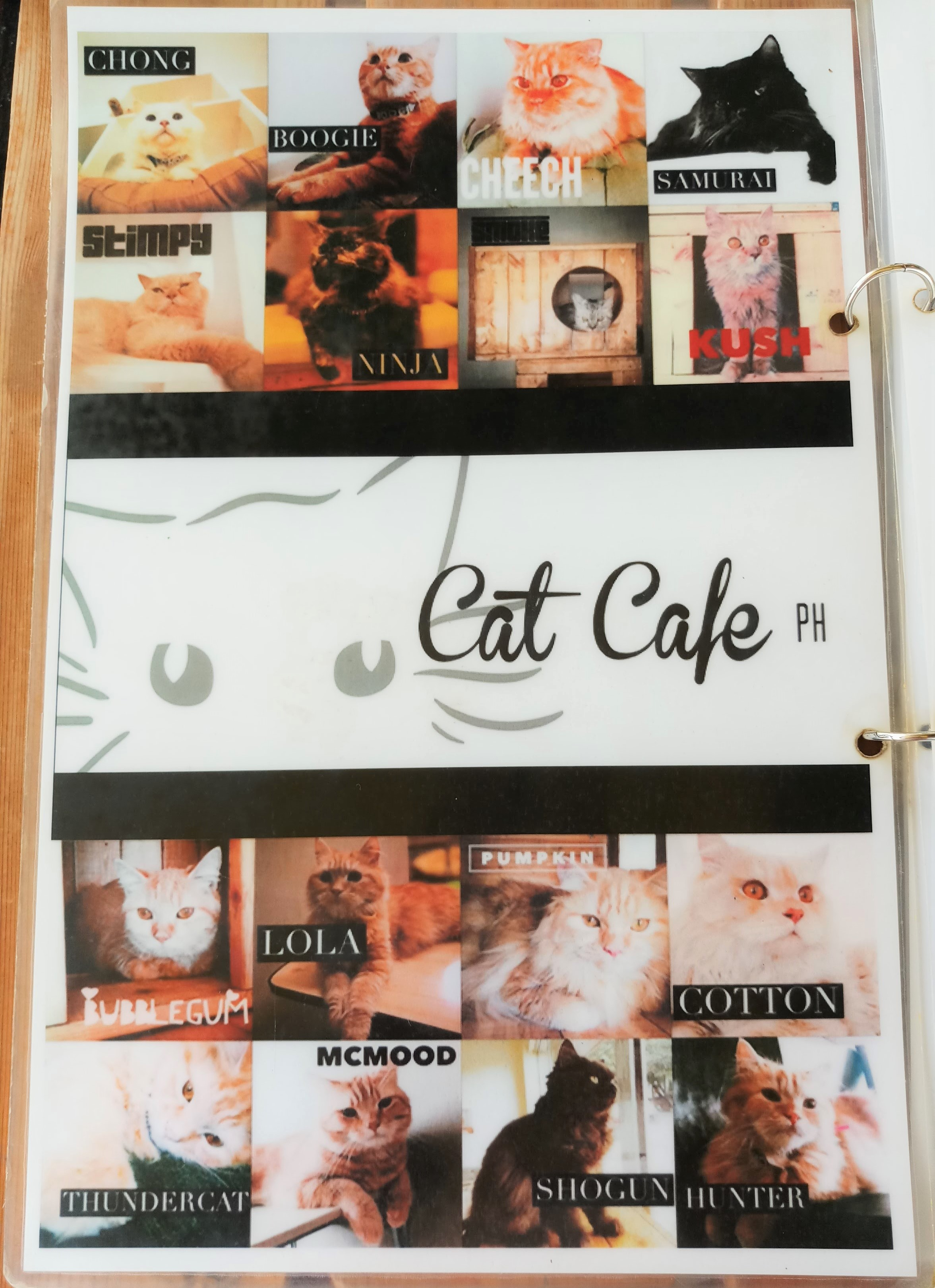 Cat Cafe Cebu - Cat names