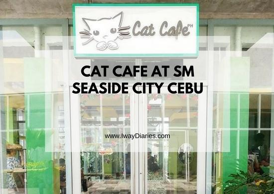 Cat Cafe Cebu - featured